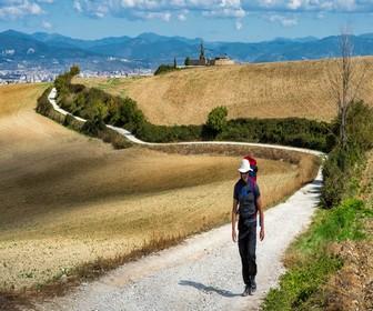 Camino-Frances-por-Burgos