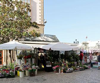 Plaza-de-Las-Flores-Cadiz