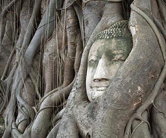 Templo-Wat-Mahatat