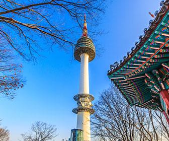 Torre-N-Seul