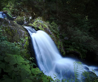 Triberg-cascadas