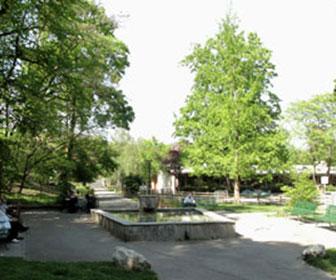 geisendorf-parque-en-Ginebra