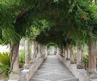 jardines-de-alfabia
